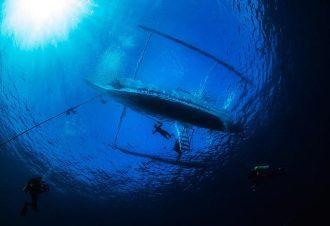 El Galleon Resort and Asia Divers.