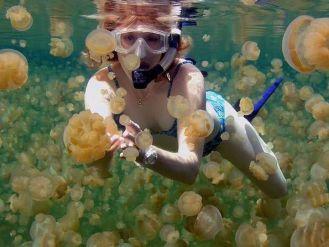 Kakaban Island and Jelly Fish lake.
