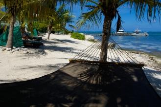 Chill in a hammock.