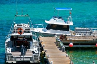 Dive Boats.