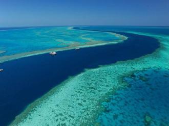 Whitsunday Reef