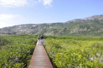 Island Walks
