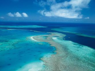 Aerial view of the reef.