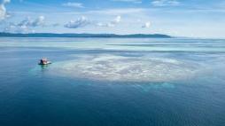 Manta Ranger Station 3 - Papua Explorers - by ArtAndWater